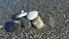 Some stones in the shoreline beach. Illuminated by the sun Stock Photography