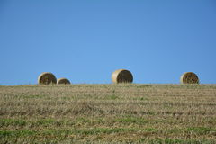 Some  straw bales in horizon on harvested field. Several straw bales in horizon on harvested field with many blue sky Stock Photography