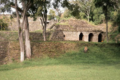 Some of the structures of Tonina archaeological site with landscapes of Ocosingo in Chiapas, Mexico stock photos