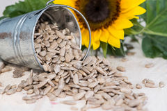 Some Sunflower Seeds. On wooden background Royalty Free Stock Image