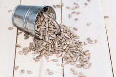 Some Sunflower Seeds. On wooden background Royalty Free Stock Photo