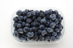Some sweet organic blueberries. In a plastic container stock image