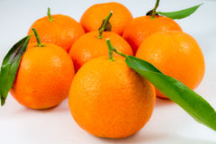 Some sweet tangerines on white. Some sweet tangerines isolated on white background stock photography