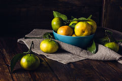 Some Tangerines in Blue Bowl. Still Life with Tangerines in Blue Bowl. Selective Focus on Tangerines in Bowl Stock Photography