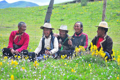 Some Tibetans chatting, sitting on the prairie Stock Photos
