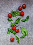 Some tomatos and basil Stock Image