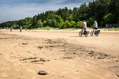 Some tourists on bicycles on a beach. Some people cycling into the distance on a beach on a sunny day. the forest in the background. biking on sand. a sunny day royalty free stock image