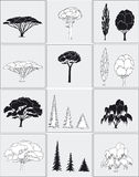 Some trees Royalty Free Stock Photography