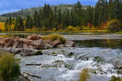 Fresh stream of water. Some of the trees are still green at the beginning of an autumn. Only slight mix of a yellow and orange colors adds to the scenery. A Royalty Free Stock Photo