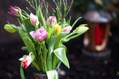 Tulips on a grave. Some tulips on a grave with a grave light in the background Stock Photography