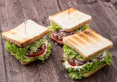 Some Tuna Sandwiches Royalty Free Stock Images
