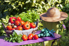 Some vegetables in a basket Royalty Free Stock Image