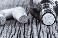 Some very old wine bottles. Stock Photography