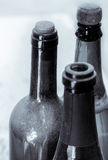 Some very old wine bottles . Stock Images