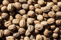 Some walnut at street market. Image of Some walnut at street market Royalty Free Stock Image