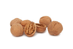 Some walnuts (). Some walnuts (full and cracked) on white background royalty free stock photo