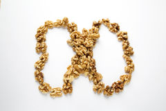 Some walnuts. Some delicious walnuts on white background royalty free stock photography