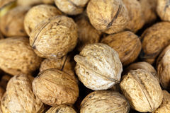 Some walnuts background , close up. Close up,Some walnuts background royalty free stock photography