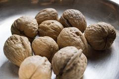 Some walnuts on metal plate. On the table Stock Photography