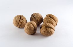Five walnut all together Stock Photography