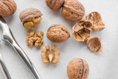 Some walnuts and silver nutcracker. On grey background stock photos