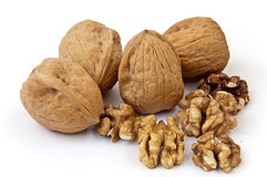 Some walnuts on the white background. Some covered and uncovered walnuts on the white background royalty free stock images