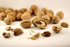 Some walnuts on white paper. stock image