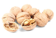 Some walnutson a white. Some walnuts on a white background Royalty Free Stock Image