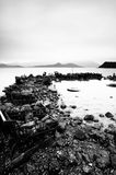 Some wasted stuffs at the coastline. Black and white royalty free stock image