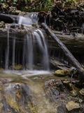 Some Water. Over The Old Tree, flowing down The Hill, in Forest nearby Daruvar, Croatia, photographed at Autumn morning hours Stock Photography