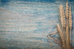 Some wheat rye ears on vintage board horizontal version copy spa Stock Images