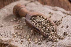 Some white Peppercorns. (close-up shot) on wooden background stock photos