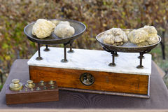 Some white truffles on the scales. Some white truffles on the vintage scales, in the background hills with vineyards in autumn Langhe Piedmont Italy Royalty Free Stock Image