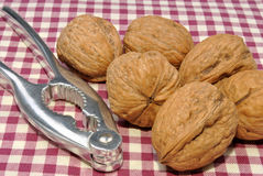 Some whole organic walnuts Royalty Free Stock Photo