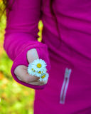 Some Wildflowers. A girl holding out some small white and yellow wildflowers. Little wild flowers look like daisies royalty free stock photography
