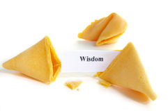 Some wisdom. Wisdom fortune cookie on white background Royalty Free Stock Photography
