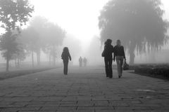 Some women in fog. Some women walking away on a foggy morning in a park stock photo