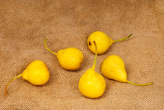 Some yellow  pears on burlap. Background Royalty Free Stock Image