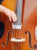 Somebody playing cello. Somebody is playing on a cello Stock Photos