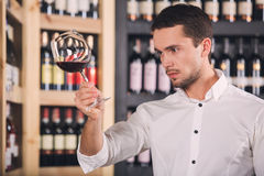 Somellier Wine Business Alcohol Drink Store Concept. Somellier young man holding wine glass professional Royalty Free Stock Photos