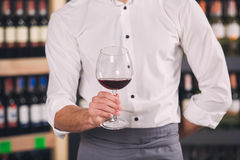 Somellier Wine Business Alcohol Drink Store Concept. Somellier young man holding wine glass professional Stock Photos