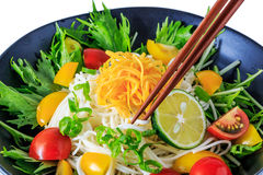Somen - Japanese style thin wheat noodles Stock Images