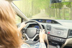 Somene driving car. Someone driving car in green spring lane road royalty free stock photography