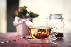 Someone preparing tea. Putting tea bag into glass cup full of hot water Stock Images