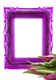 For someone special. Purple picture frame with purple tulips on a white background Royalty Free Stock Photo