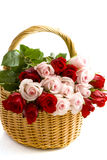 For someone special. Pink and red roses in a wooden basket isolated over white Royalty Free Stock Images