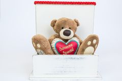 Someone special. Teddy bear in the wooden gift box holding red pillow heart with text Someone Special, isolated on white background. Valentine`s Day Stock Photos