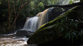 Somers dalle cascate, Somersby, Nuovo Galles del Sud, Australia Immagini Stock