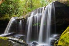 Somers por cachoeiras, Somersby, Novo Gales do Sul, Austrália foto de stock royalty free