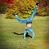 Somersault on the Meadow. Toned photo of Somersault on the Autumn Meadow Stock Photography